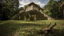 el ceibal peten foto por ivan castro - De visita por el Ceibal, Sayaxché, Petén