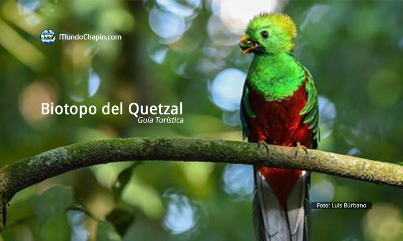Guía Turística a Biotopo del Quetzal