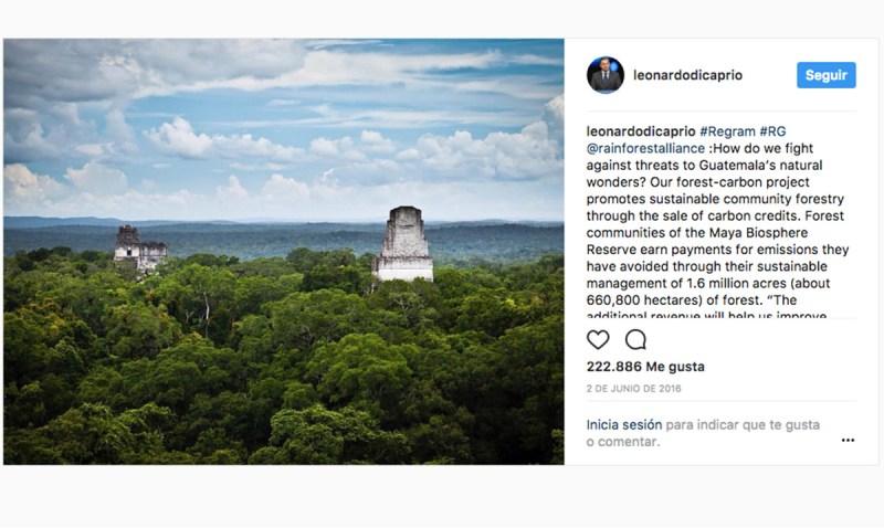 Leonardo DiCaprio se une a la lucha contra la tala de árboles en Petén