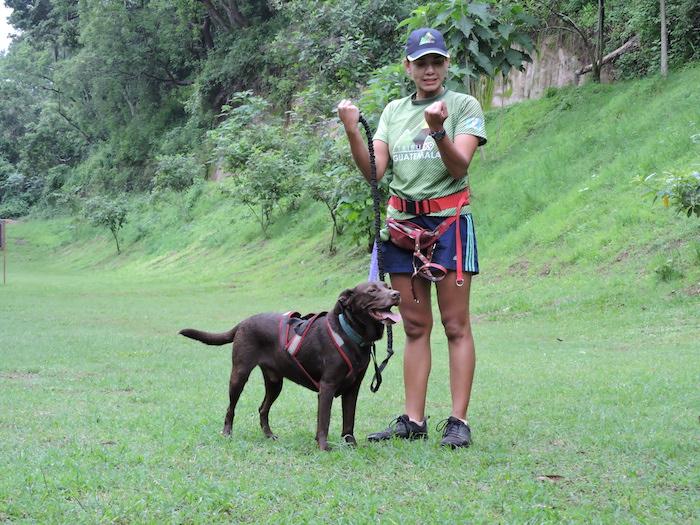 canicross mundochapin guatemala 0 - Una mañana con el equipo de canicross