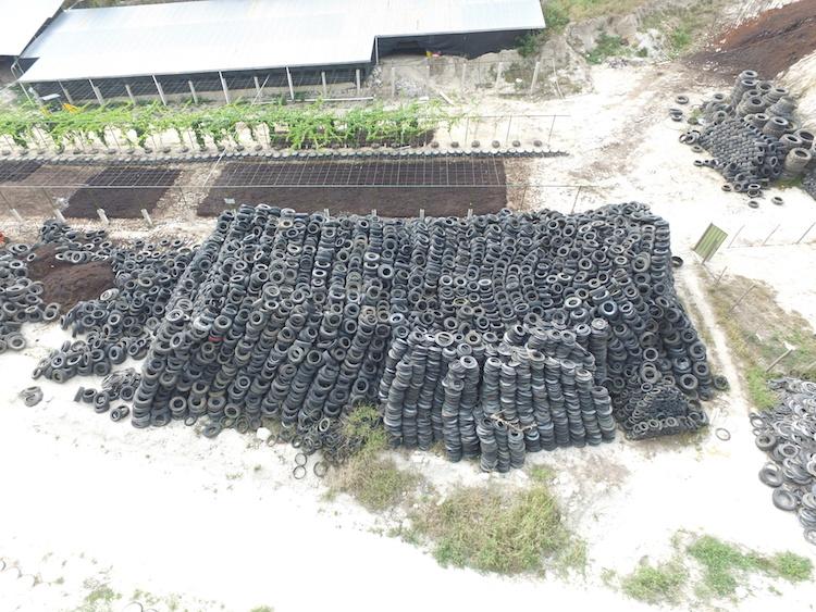 im3 - Yovani Guevara quiere 100 mil llantas recicladas para contruir un muro