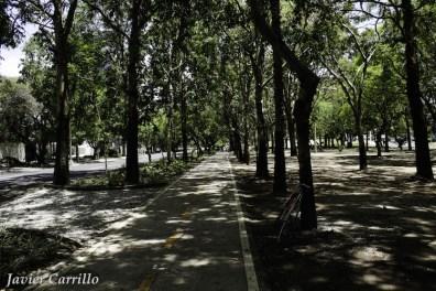 mg 5479 - Guatemala planea para 200 km de ciclovía en la capital