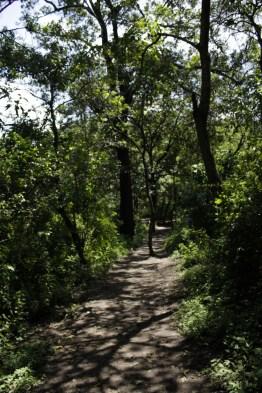 mg 6833 14 - El Parque La Asunción, la naturaleza dentro de la ciudad