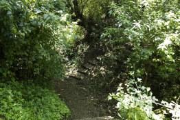 mg 6836 16 - El Parque La Asunción, la naturaleza dentro de la ciudad