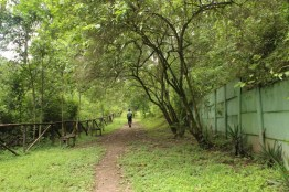 img 7030 - Parque Ecológico Kanajuyú, un lugar para disfrutar dentro de la ciudad