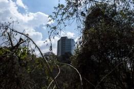 img 8935 35 - Conoce el parque ecológico de Guatemala reconocido en Italia