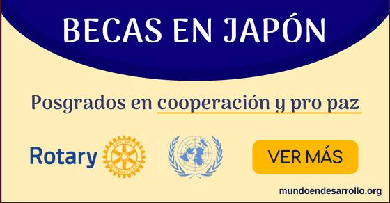 Becas en Japón Rotary