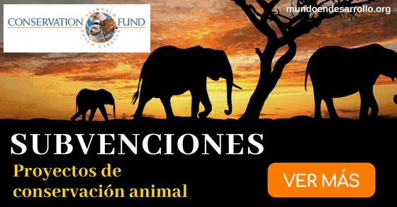 proyectos de conservacion animal
