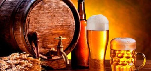 como fabricar cerveja artesanal