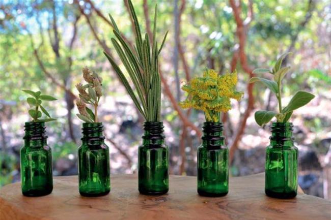 curso profissionalizante de aromaterapia online 300x200 - Curso de óleos essenciais veja o que é aromaterapia e para que serve