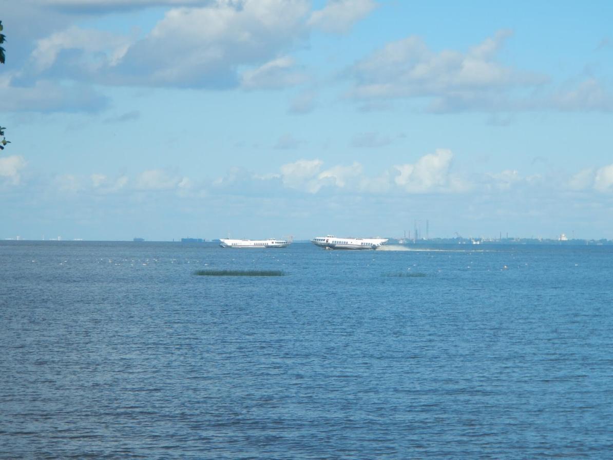 Catamara Hydrofoil Peterhof São Petersburgo Rússia Mundo Indefinido