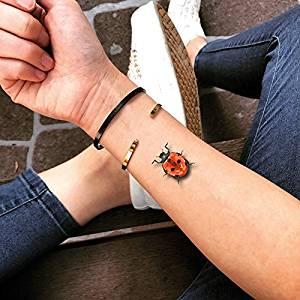 cabecera_tatuajes_de_mariquita-mundomariquita.com