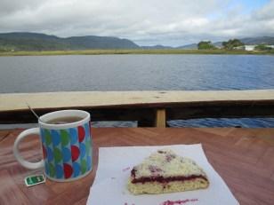 Un Té y un Kuchen de frambuesa para acompañar el paisaje