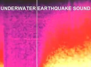 Sonido real bajo el agua del terremoto de Japón