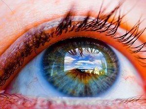El ojo humano detecta el campo magnético terrestre