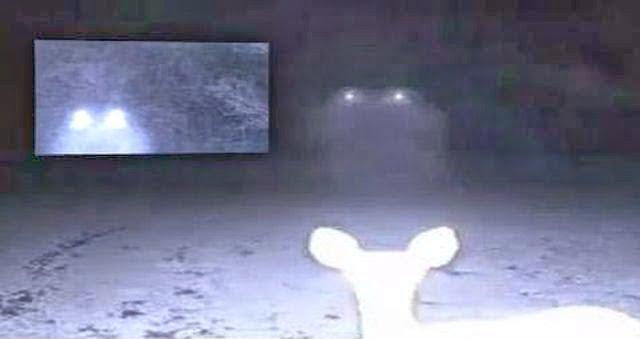 Misteriosas luces flotantes captadas en cámara en Cumbest Bluff, Mississippi