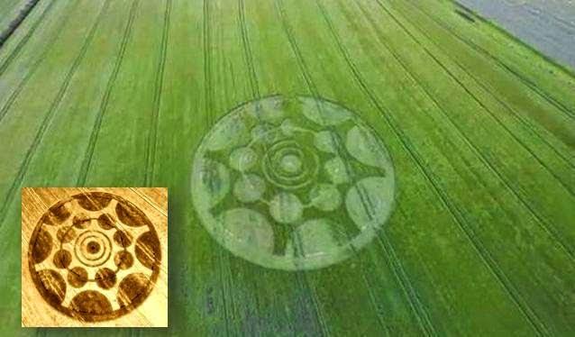 Círculo de la cosecha encontrado en Pedworth, Worcestershire, Reino Unido