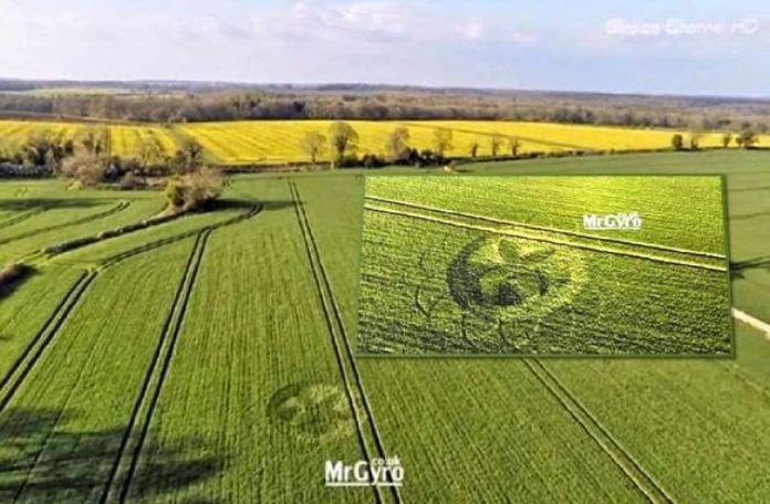 Nuevo círculo de la cosecha 'La Flor de la Vida' descubierto en Gloucestershire, Reino Unido