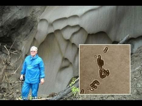 Científico Ruso Afirmó Descubrir la Vida Eterna