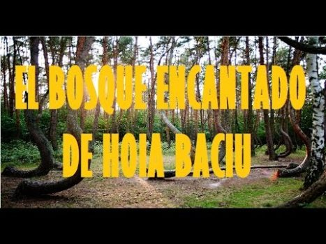 El Bosque Encantado de Hoia Baciu