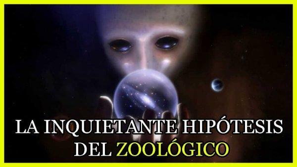 Los Extraterrestres ya Saben que Existimos y NO son Hostiles: La Hipótesis del Zoológico