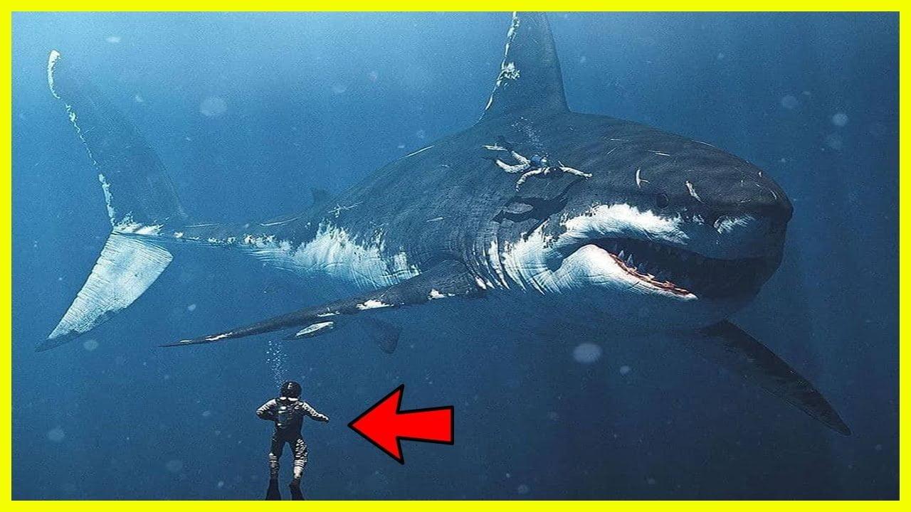 Revelada la VERDAD Sobre la Criatura Más Increíble que Hubo en los Océanos