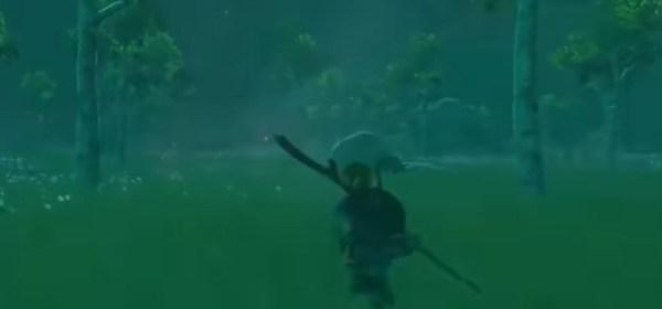 The Legend of Zelda Breath of the Wild Nintendo Mundo N
