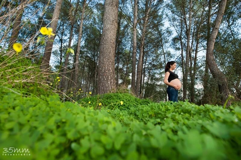 Embarazo y estado de gracia   Naturaleza y Salud