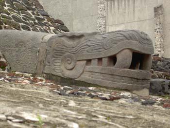 Cabeza de serpiente. Museo del Templo Mayor de Tenochtitlán. México D.F