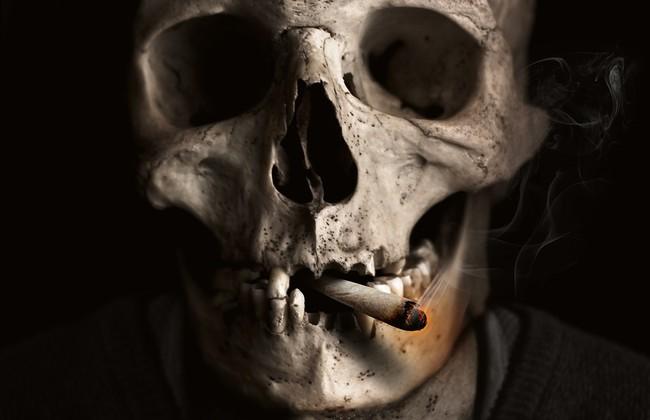 Skull And Crossbones 1418827 960 720