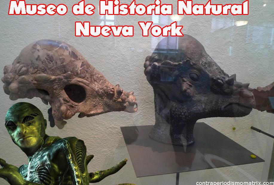 reptilianonuevayork - La Atlántida era: Reptilianos comehombres y anunnakis