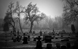 c56d7 cementerio el dia de todos los santos - inicio