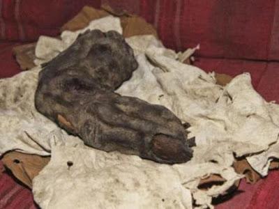 Dedo gigante encontrado en Ejipto