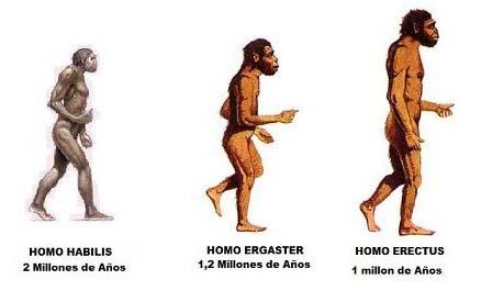historia de la evolucion del hombre - ¿Es este un puente construido por el hombre hace 1,8 millones de años?
