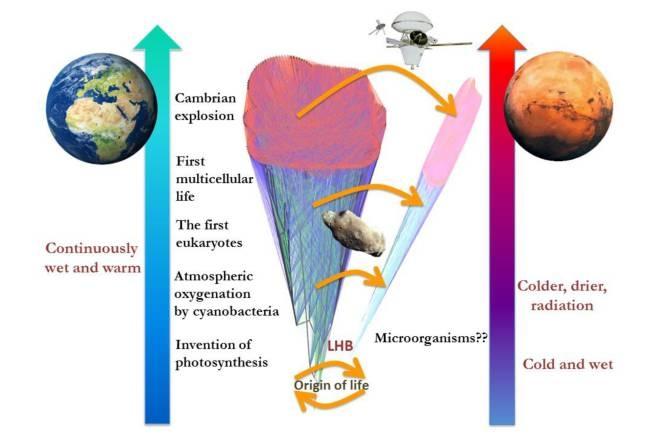 Busquemos vida en Marte antes de que sea demasiado tarde
