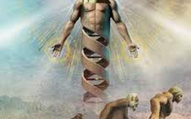 HAR1, Zona del Genoma Humano que nos Hace Diferente
