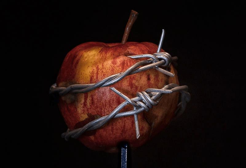 """15162303835896021526980433108445 - El """"fruto prohibido"""" de la Biblia nunca fue una manzana, fue un error de traducción"""