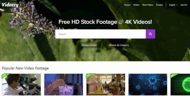 الصفحة الرئيسية في موقع Videezy
