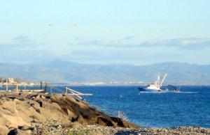 puerto de El Sauzal
