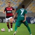 Comentarista aponta meia do Flamengo como melhor substituto de Dudu