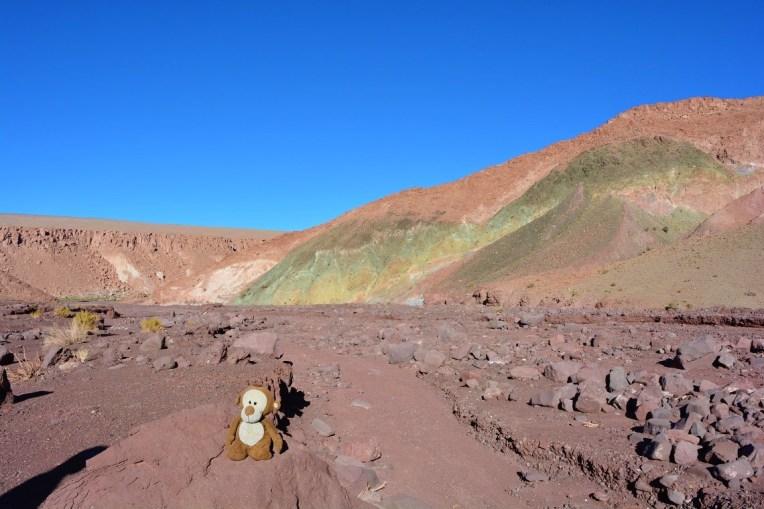 Mucuvinha no Vale do Arco-íris, no Atacama