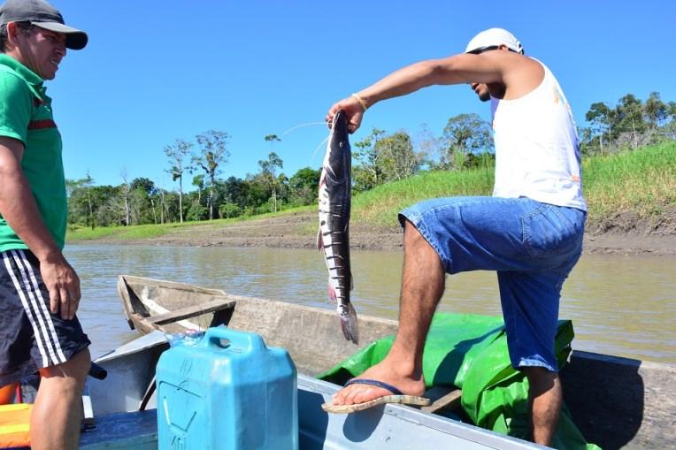 Que tal almoçar um peixe recém pescado?