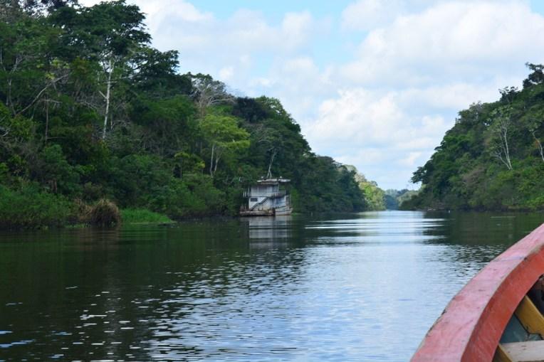 Seguindo de barco pelos rios da Selva Amazônica
