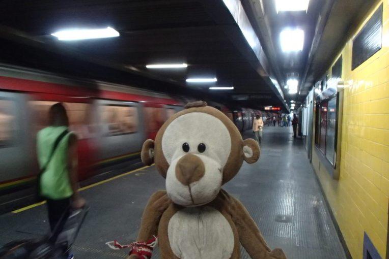 Mucuvinha no metrô de Caracas