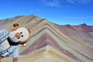 Mucuvinha no Cerro Colorado