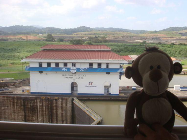 Mucuvinha no Canal do Panamá