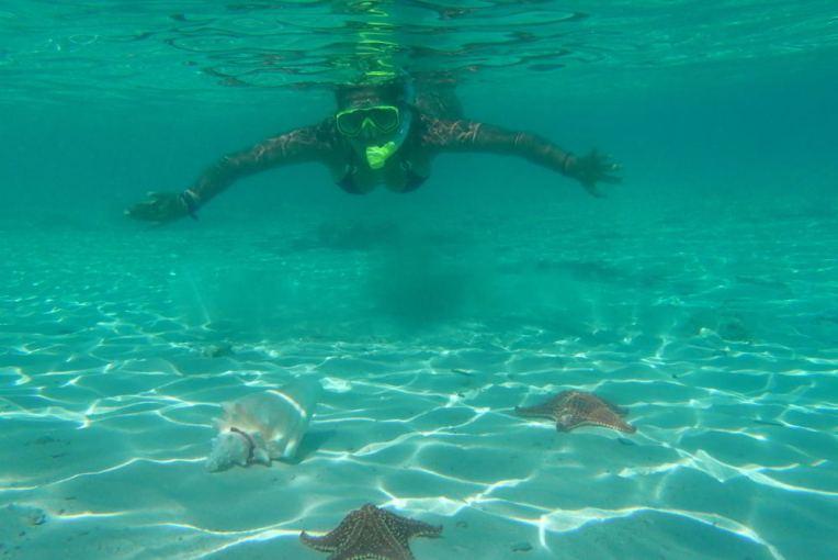 Mergulhando com estrelas-do-mar em San Blas