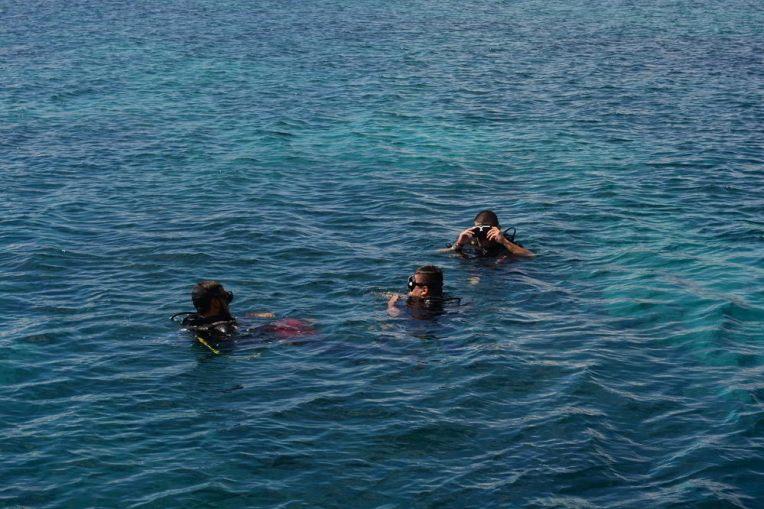 Mergulho em Utila