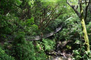 Reserva Natural Atitlán