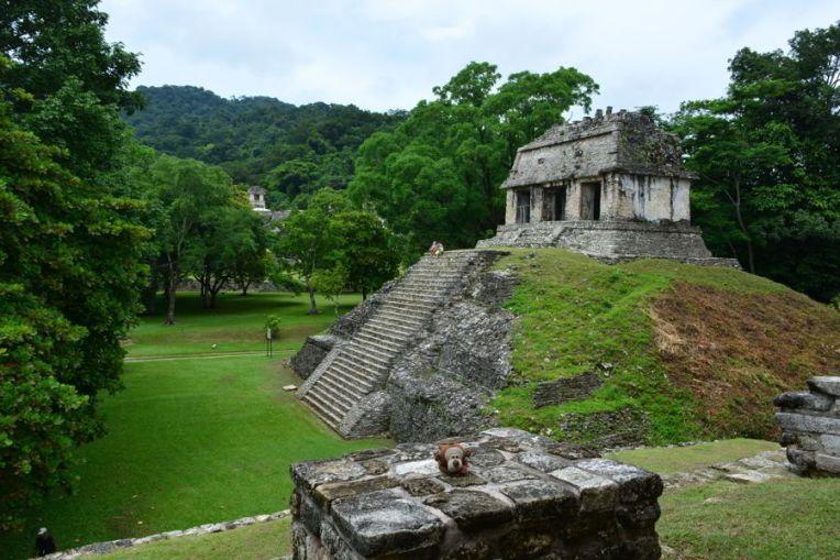 Mucuvinha nas ruínas de Palenque